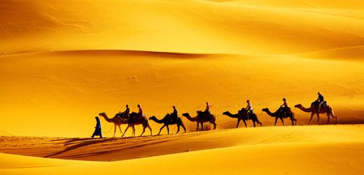 Interest--cultural-journey