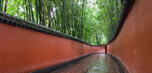 Tour---China---Chengdu---rec