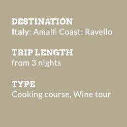 tour-treasure-amalfi-coast-info